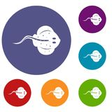 Stingray fish icons set. In flat circle red, blue and green color for web Stock Photo