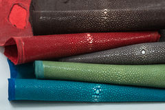 Stingray leather. Color perfect for any use Royalty Free Stock Photo