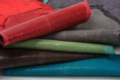 Stingray leather. Color perfect for any use Royalty Free Stock Photography