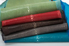Stingray leather. Color perfect for any use Stock Image