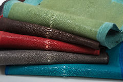 Stingray leather. Color perfect for any use Stock Photo