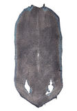 Stingray skin Stock Photo