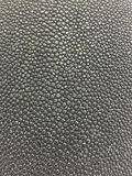 Stingray skin texture stock photography