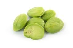 Stink bean Stock Image