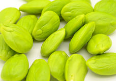 Stink bean Royalty Free Stock Photography