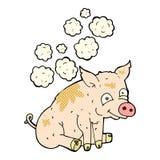 stinkendes Schwein der komischen Karikatur Stockfoto