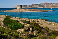 Stintino plaża w Sardinia Obraz Royalty Free