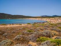 Stintino, Sardinia Royalty Free Stock Photography