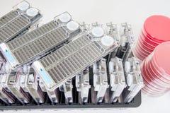 Stip voor opsporing van ziekteverwekkers en drugweerstand door geautomatiseerd Stock Foto