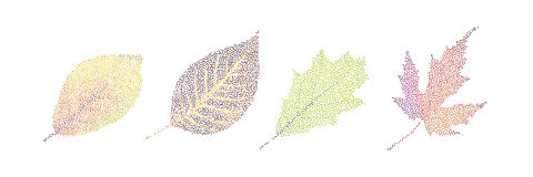 Stipple colorful isolated vector botanic garden nature Autumn le. Af collection Stock Photos