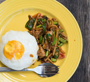 Stir curry rice with fried egg Stock Image