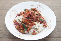 Stir firied pork with basil, Thai spicy dish, Pad Kaprow favorite street food in Thailand royalty free stock images