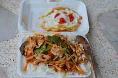 Stir-fried bamboo shoot with chicken curry in foam box for easy lunch. Stir-fried bamboo shoot with chicken curry in white foam box for easy lunch Stock Photos
