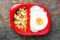 Stir-Fried Basil Chicken and Fried Egg. With Rice stock photo