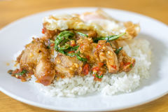 Stir fried basil with crispy pork Royalty Free Stock Photos