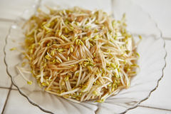 Stir fried bean sprout Stock Photo