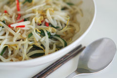 Stir-fried bean sprouts royalty free stock photo