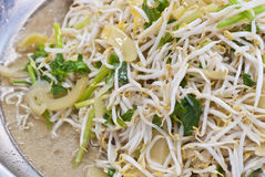 Stir-fried bean sprouts Royalty Free Stock Image