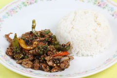 Stir fried beef with black hot pepper and steam rice Royalty Free Stock Photos