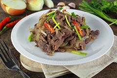 Stir fried beef with onion Royalty Free Stock Photography