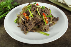 Stir fried beef with onion Royalty Free Stock Image