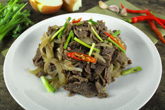 Stir fried beef with onion Stock Images