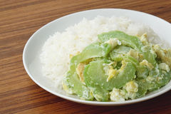 Stir fried bitter gourd with egg on rice Royalty Free Stock Photo