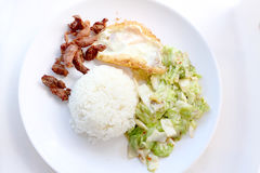 Stir-fried cabbage with fish sauce, fired pork , fired egg with fish sauce  in the white plate Royalty Free Stock Photo