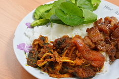Stir fried cat fish with chilli paste and sweet pork Royalty Free Stock Photo