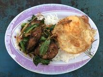 Stir fried catfish, fried egg Stock Photos