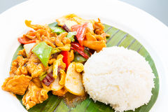 Stir fried chicken cashew Royalty Free Stock Images
