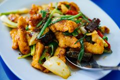 Stir-fried chicken with cashew nuts.  stock photos