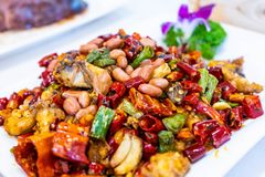 Stir fried chicken with chili and peanut stock images