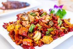 Stir fried chicken with chili and peanut royalty free stock photos
