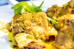 Stir fried chicken and curry Royalty Free Stock Photos