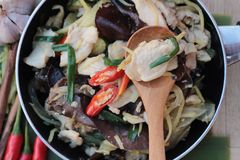 Stir fried chicken, ginger and fresh ginger sliced. Royalty Free Stock Images