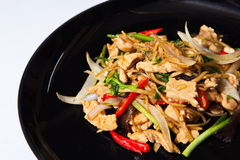 Stir fried Chicken with Ginger Royalty Free Stock Photo