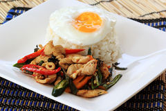 Stir Fried Chicken with Holy Basil and steamed rice (Krapao Gai) Royalty Free Stock Images