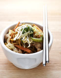 Stir Fried Chicken Noodles Stock Images
