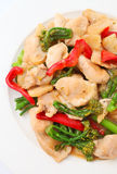 Stir Fried Chicken with Vegetable Royalty Free Stock Image