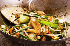 Stir Fried Chicken with Vegetables Royalty Free Stock Image