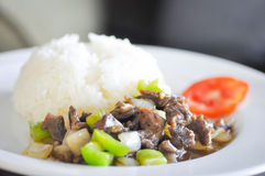 Stir-fried chilies  with fried beef and rice Stock Photography