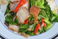 Stir-fried Chinese kale with crispy pork on rice Royalty Free Stock Image