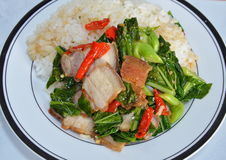Stir-fried Chinese kale with crispy pork on rice Stock Photos