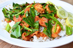 Stir fried Chinese kale and crispy pork in spicy curry on rice Stock Image