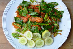 Stir fried Chinese kale and crispy pork in spicy curry on rice Stock Photography