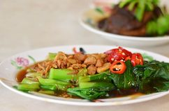 Stir fried chinese kale with oyster sauce Stock Photo