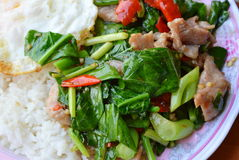 Stir fried Chinese kale with pork on rice. Stir fried Chinese kale with pork on plain rice stock images