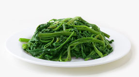 Stir-Fried On choy Royalty Free Stock Photo