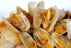 Stir fried clams with roasted chili paste. Closeup of Thai food Stir fried clams with roasted chili paste Royalty Free Stock Photography